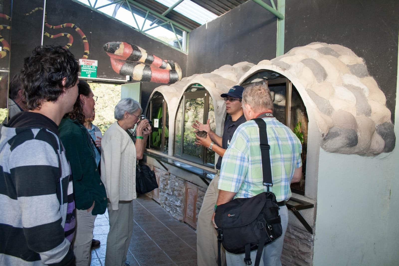 Herpetarium Adventures - Monteverde